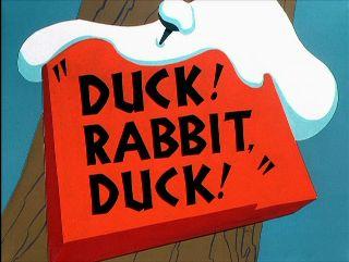 Duck! Rabbit! Duck!