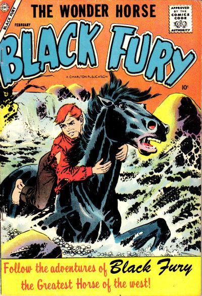 Black Fury Vol 1 12