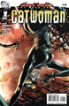 Bruce Wayne The Road Home Catwoman Vol 1 1