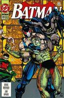 Batman Vol 1 489