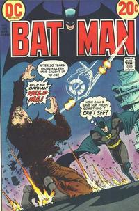 Batman Vol 1 248