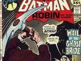 Batman Vol 1 236