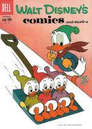 Walt Disney's Comics and Stories Vol 1 243