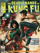 Deadly Hands of Kung Fu 32