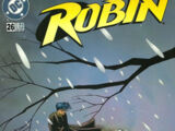 Robin Vol 4 26