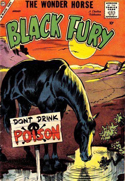 Black Fury Vol 1 17