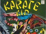 Karate Kid Vol 1 3