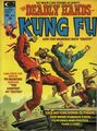 Deadly Hands of Kung Fu Vol 1 9