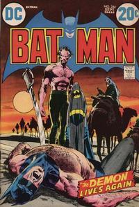 Batman Vol 1 244