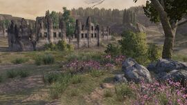 Castle 6.jpg
