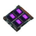 Microchips.png