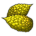 Ogurin Fruit Icon.png