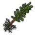 Boreal Pine Tree Sapling Icon.png