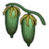 Yucca Icon.png