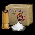 12-Gauge Salt Charge Icon.png
