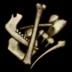 Bones Icon.png