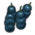 Oilpod Fruit Icon.png