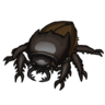 Black Beetle Icon.png