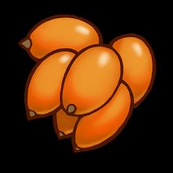 Orange Berries Icon.png