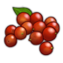 Coffee Berries Icon.png