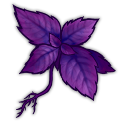 Purple Herb Icon.png