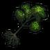 Oak Tree Sapling Icon.png