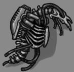 Skeletal.png