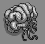 Core Cerebral Tissue