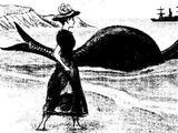 List of sea serpent sightings in the Pacific Ocean (1848–1891)