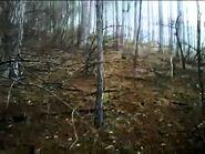 Ukrainian Yeti Sasquatch Bigfoot footage