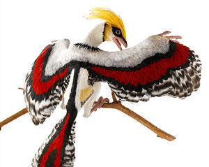 Gitmo bird.jpg