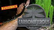 Fossil Fridays Recreating Prehistoric Ecosystem (Dangerous!) Coal Forest