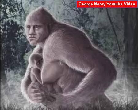 Bigfoot analysis clip image034.jpg