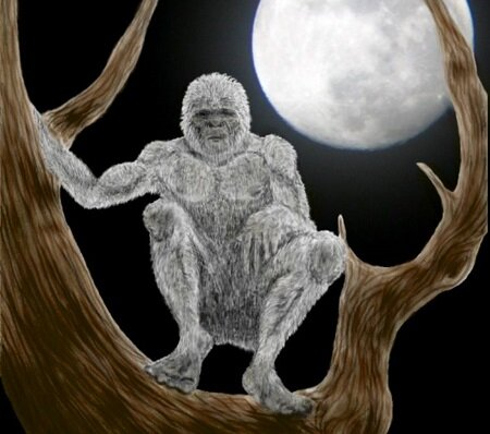 Mátranovák Treeskinner