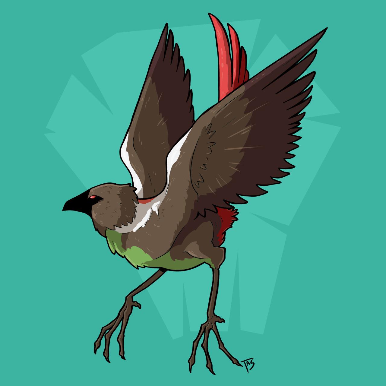 Minka Bird