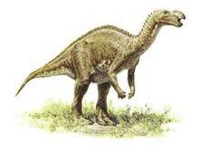 Muttabarrasaurus.jpeg