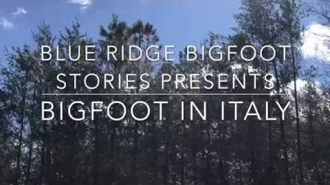BIGFOOT_IN_ITALY._1960's_Locals_talk_of_the_Man_Beast_who_lived_in_the_Marsh