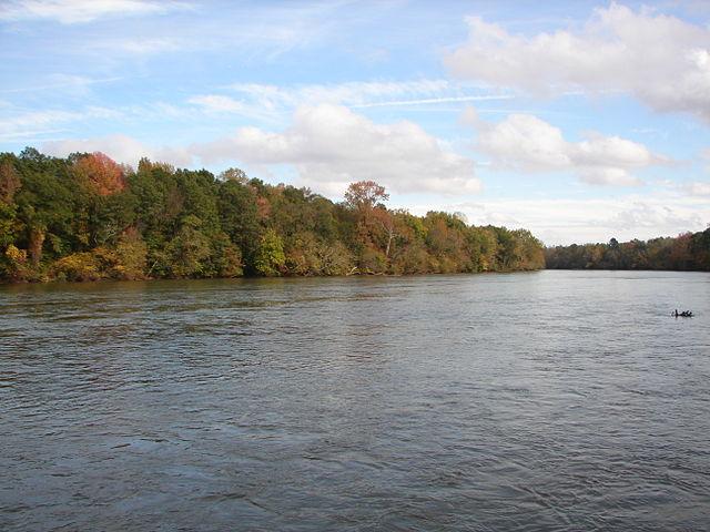 Catawba River Runner