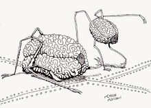 Space Brains of Palos Verdes.jpg