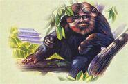 Yeren (Chinese Wildman)