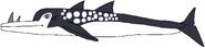 Rhinoceros Dolphin