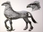 Hippogriff.jpg