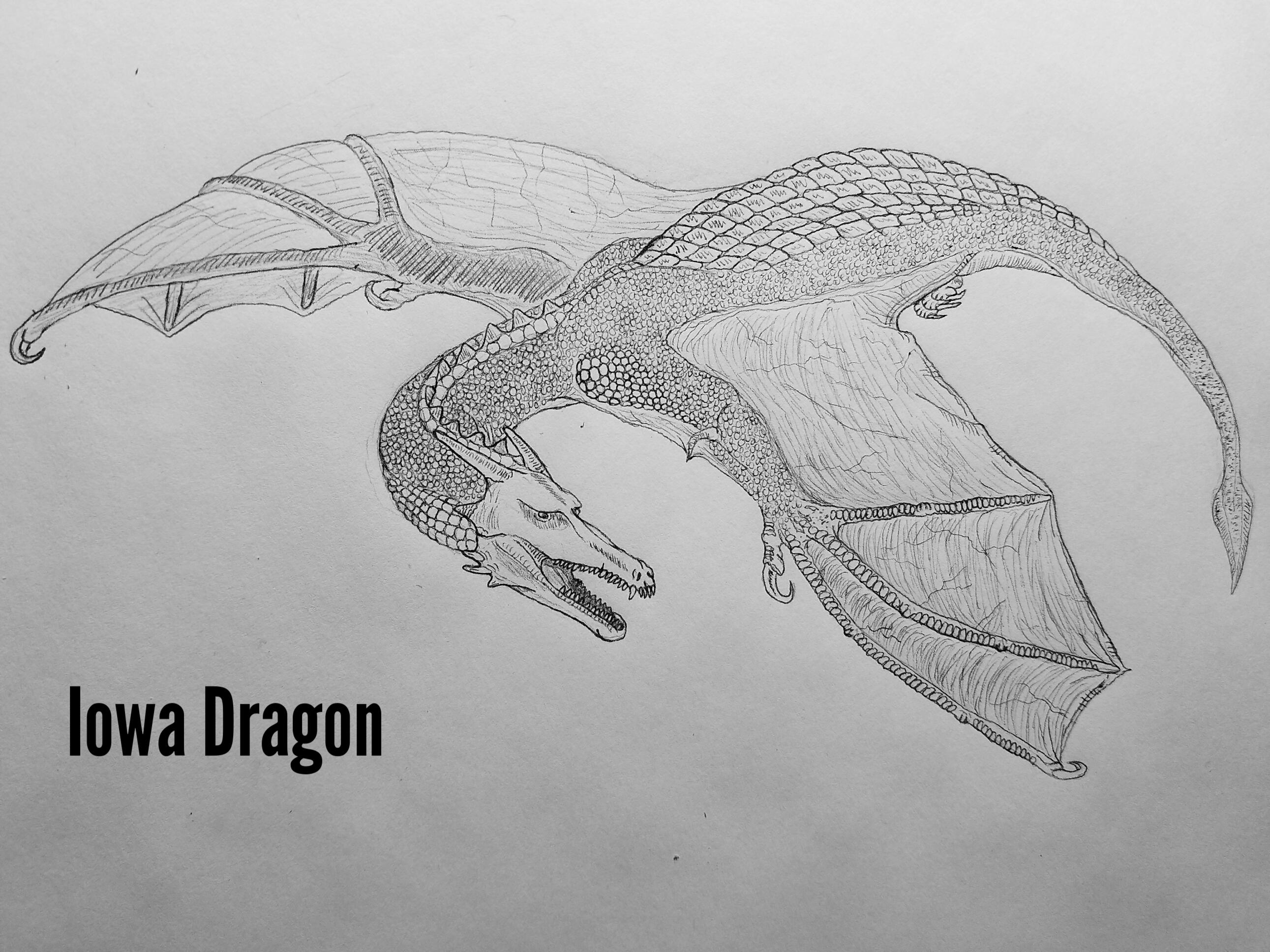 Iowa Dragons