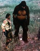 Sasquatch Red Dead Redemption
