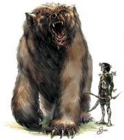 Bergman's Bear