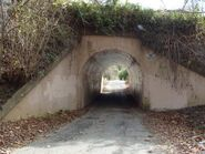 Bunnyman-bridge