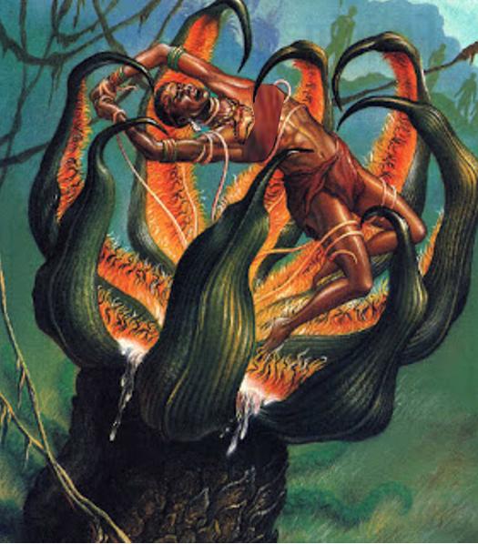 The Madagascar Tree