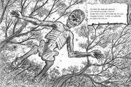 Corpo-Seco depiction in a folklore book