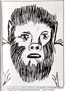Pennsylvania 1973 human-like bigfoot.jpg