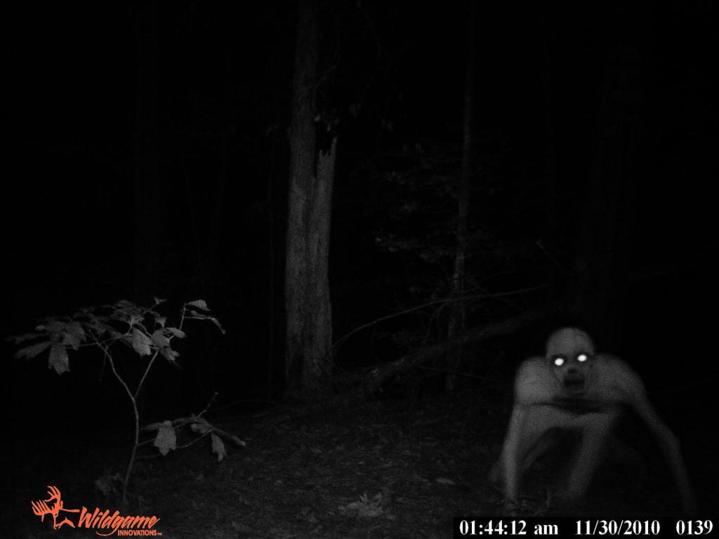 New Louisiana Swamp Monster